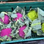 Market stalls, vegetables, produce, Northwalsham, farmers amrket