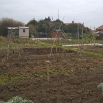 allotment, Norfolk, England