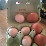 eggs, Norfolk, bed & Breakfast