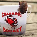 kids crabbing, cromer, north Norfolk