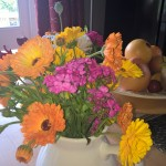 Cut Flowers, Norfolk, B&B