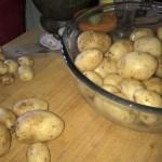 New Potatoes, Norfolk, Spuds